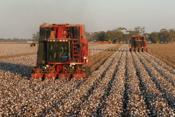 Case cotton pickers