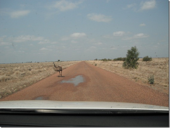Road to Ilfracombe – outback QLD