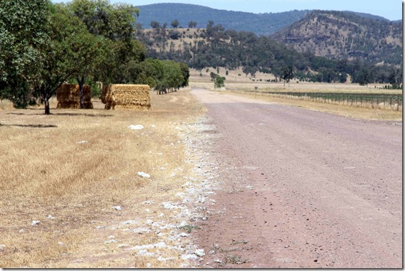 Road is Paved with cotton