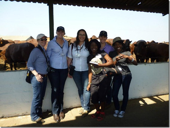 Feedlot in Zambia with Aus and Zambian delegates (3)