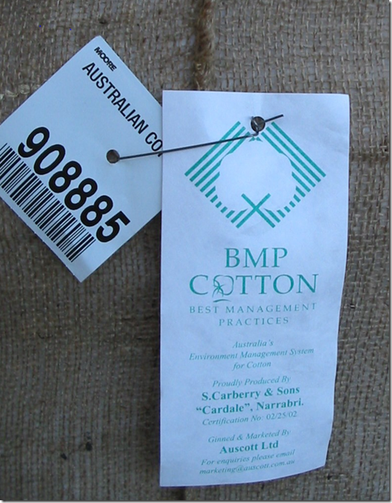 Cotton BMP