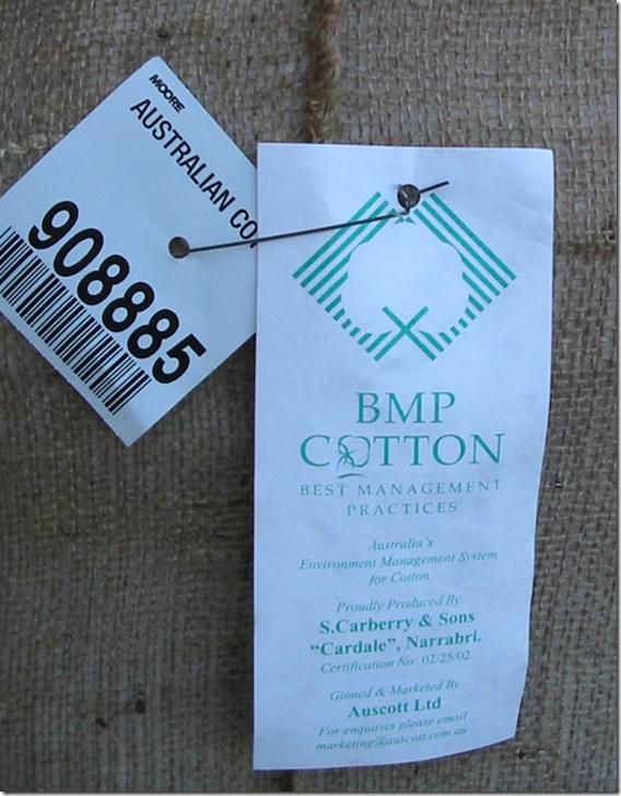 Cotton BMP