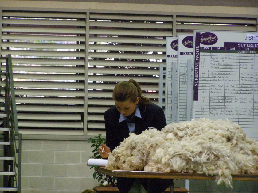 Fleece Judging State Final and Sydney Royal Easter Show 2010