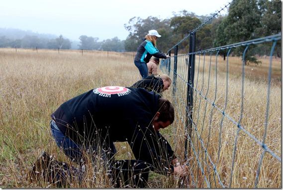 IYL volunteers fencing