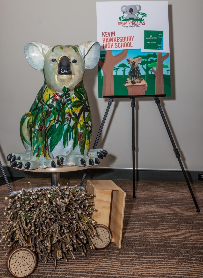 Hawkesbury Koala.jpg