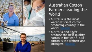 Coton Facts (1)