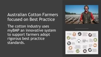 Coton Facts (10)