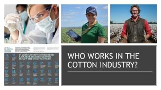Coton Facts (2)