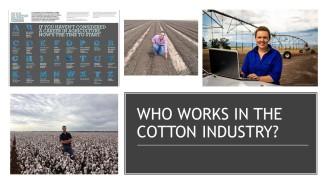 Coton Facts (3)