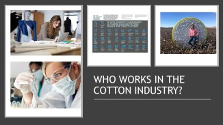 Coton Facts (4)