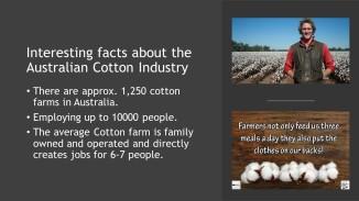 Coton Facts (5)