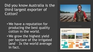 Coton Facts (8)