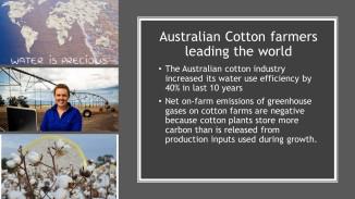 Coton Facts (9)
