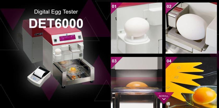 Egg Tester.JPG