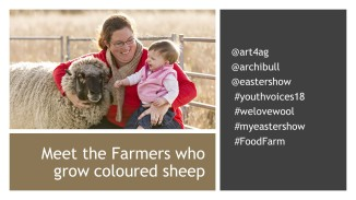 Wool Facts (1)