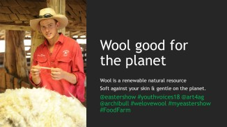 Wool Facts (8)