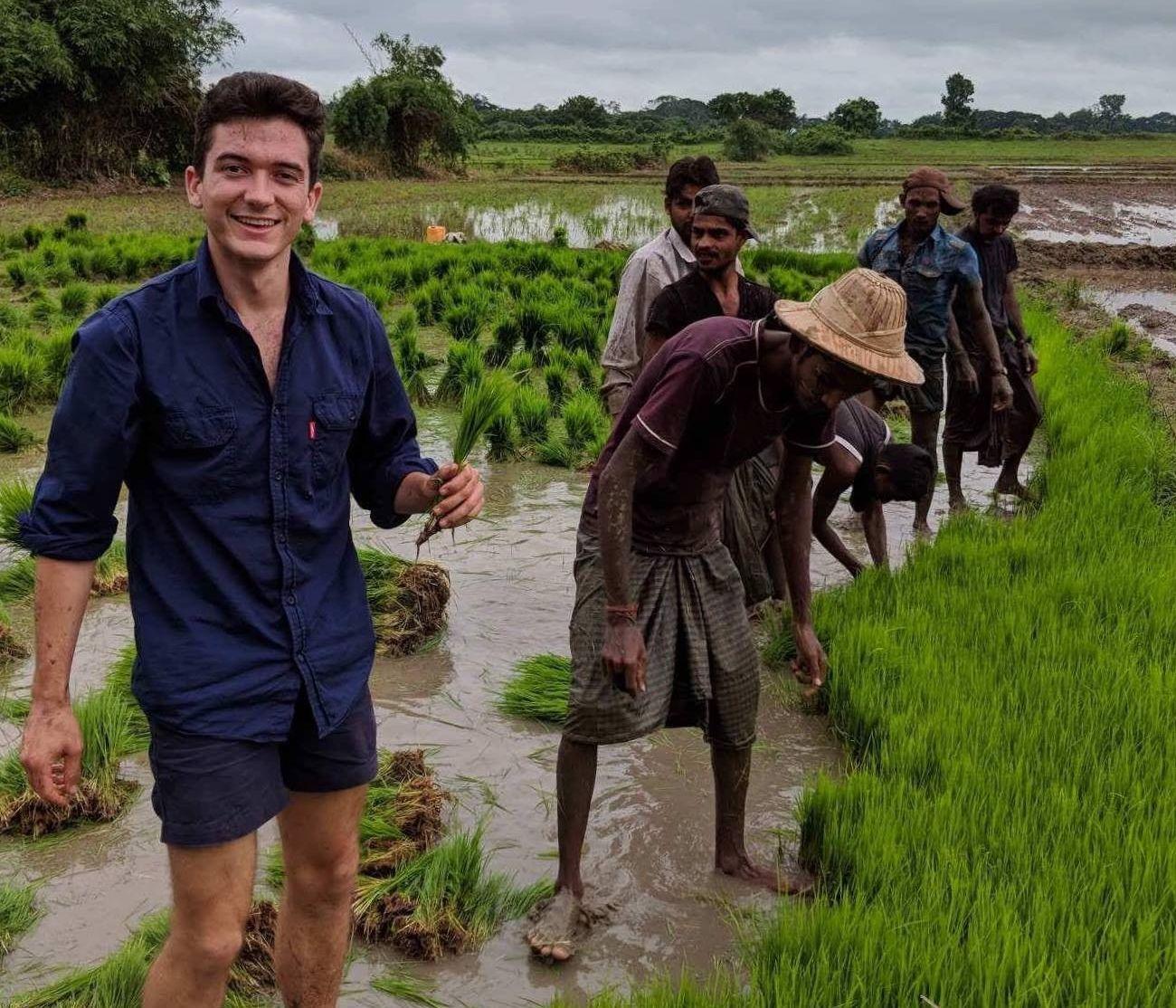 Sam Coggins in Rice Field