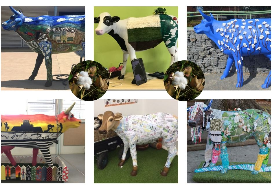 2018 ARCHIBULL PRIZE ARTWORKS – Primary and Regional Schools Showcase Cotton
