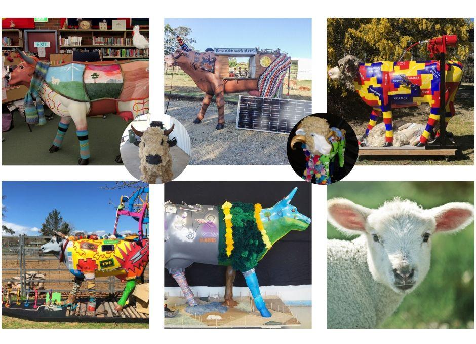 2018 ARCHIBULL PRIZE ARTWORKS – Meet our WoollyBulls
