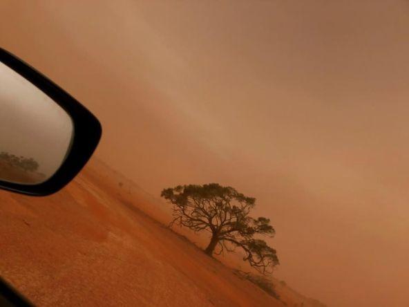 dust_bessie
