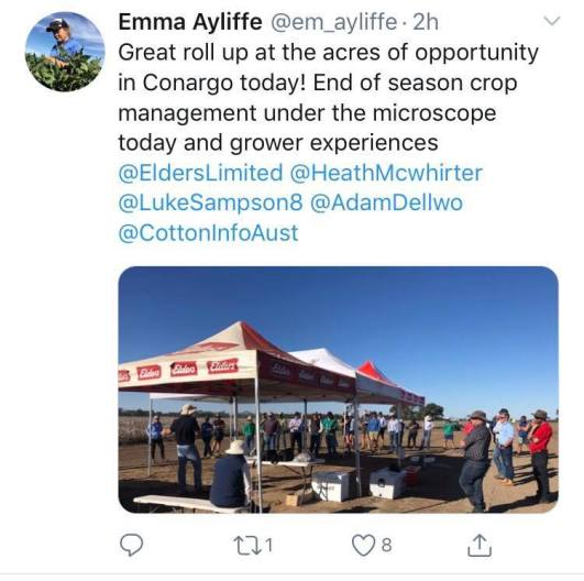 Emma Ayliffe grower day