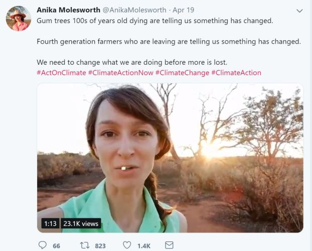 Anika Molesworth Twitter