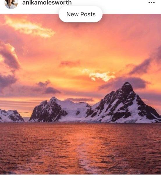 Anika Antarctic
