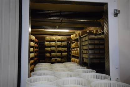 Sam Wan Cheese Italy