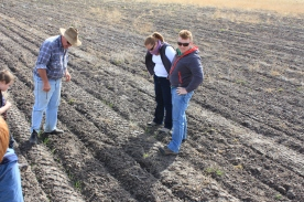 Farm Day Blog 6