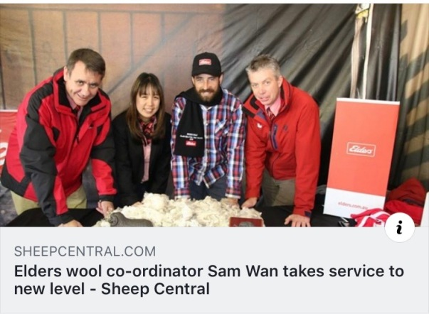 Sam Wan in Wool Central.jpg
