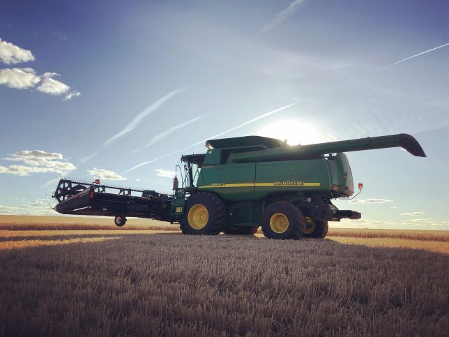 Marlee Harvest 3